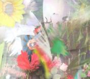 Flowers [Slipcase]