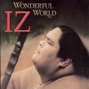 Wonderful World *