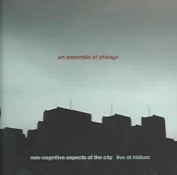 Non-Cognitive Aspects of the City - Live at Iridium