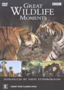 Great Wildlife Moments  [Region 4]