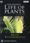 Private Life Of Plants The David Attenborough [Region 4]
