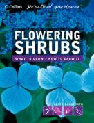 Flowering Shrubs (Collins GEM)