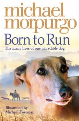 Born to Run (Collector's Edition) (Collector's Edition)