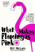 What Makes Flamingos Pink?