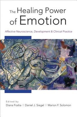 The Healing Power of Emotion: Affective Neuroscience, Development and Clinical Practice (Norton Series on Interpersonal Neurobiology)