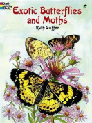 Exotic Butterflies and Moths CB