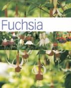 Fuchsia (Hamlyn Care Manual)