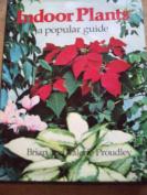 Indoor Plants: A Popular Guide
