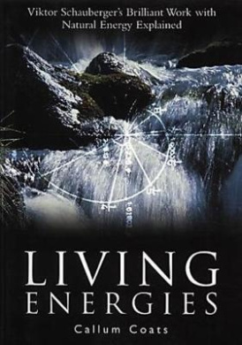 Living Energies: Viktor Scahuberger's Brilliant Work with Natural Energy Explained