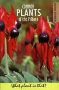 Plants of the Pilbara