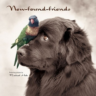 New-Found-Friends