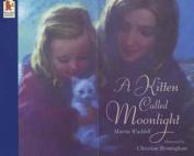 Kitten Called Moonlight