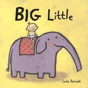 Big Little [Board book]