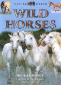 Wild Horses (Nature Watch)