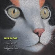 Hero Cat