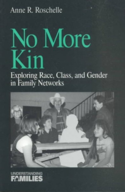 No More Kin: Exploring Race, Class and Gender in Family Networks (Understanding Families Series)