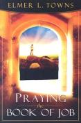 Praying the Book of Job