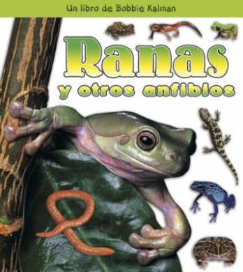Ranas y Otros Anfibios