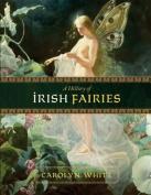 A History of Irish Fairies