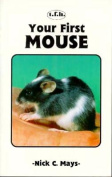 Mouse Your First