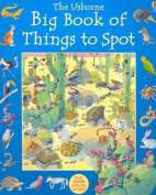 The Usborne Big Book of Things to Spot