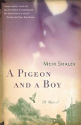 A Pigeon and a Boy