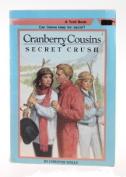 Secret Crush (A Troll book)