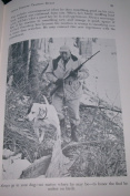 Hunting Dog Know-how