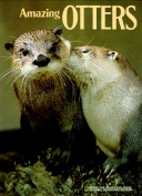 Amazing Otters