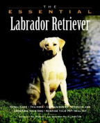 The Essential Labrador Retriever