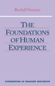 The Foundations of Human Experience