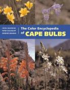 The Colour Encyclopedia of Cape Bulbs