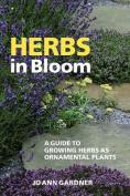 Herbs in Bloom