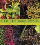 Coleus