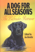 A Dog for All Seasons