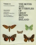 Noctuidae (Cuculliinae - Hypeninae) - Agaristidae