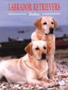 Labrador Retrievers Today