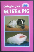 Caring for Your Guinea Pig