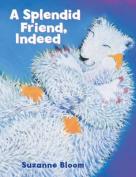 A Splendid Friend, Indeed