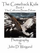 The Comeback Kids, Book 3, the California Brown Pelican