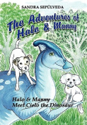 The Adventures of Halo & Manny