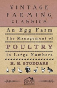 An Egg Farm - The Management of Poultry in Large Numbers