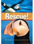 Puffin Rescue!