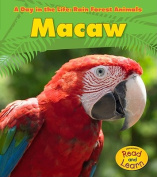 Macaw (Day in the Life