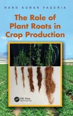 The Role of Plant Roots in Crop Production