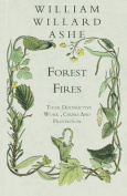 Forest Fires - Their Destructive Work, Causes and Prevention