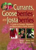Currants, Gooseberries and Jostaberries
