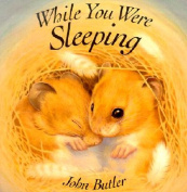 While You Were Sleeping [Board Book]