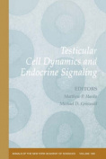 Testicular Cell Dynamics and Endocrine Signaling