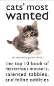 Cats' Most Wanted